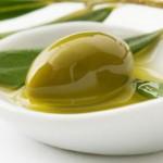 És temps de collir olives