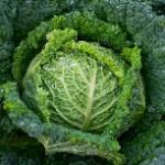 Verduras de invierno contra el cáncer